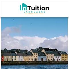 InTuition, Galway