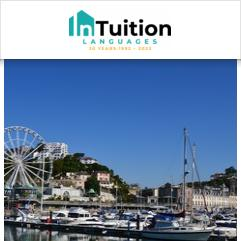 InTuition, Torquay