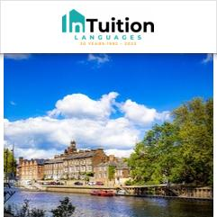 InTuition, York