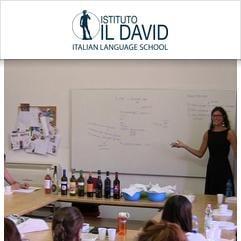Istituto Il David, Florencie