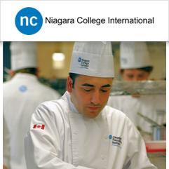 Niagara College, Welland (Niagara Şelaleleri)
