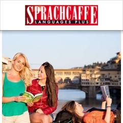 Sprachcaffe Junior Centre, Viareggio