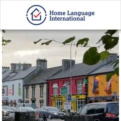 Study & Live in your Teacher's Home, Limerick