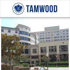 Tamwood Junior Summer Camp, ロサンゼルス