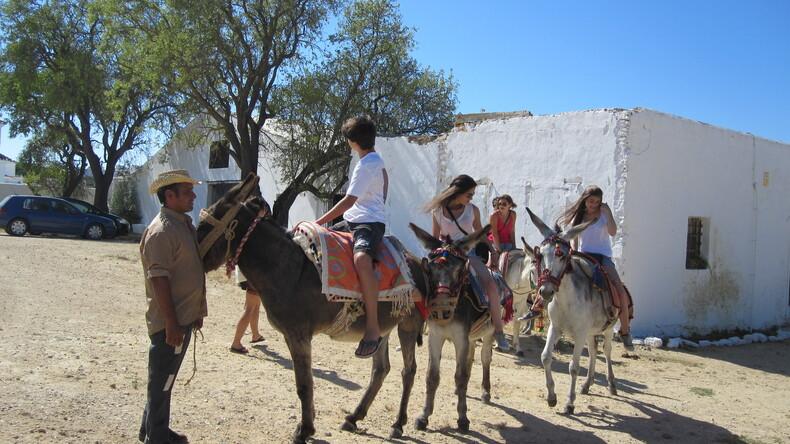 Horseback riding in Vejer de la Frontera