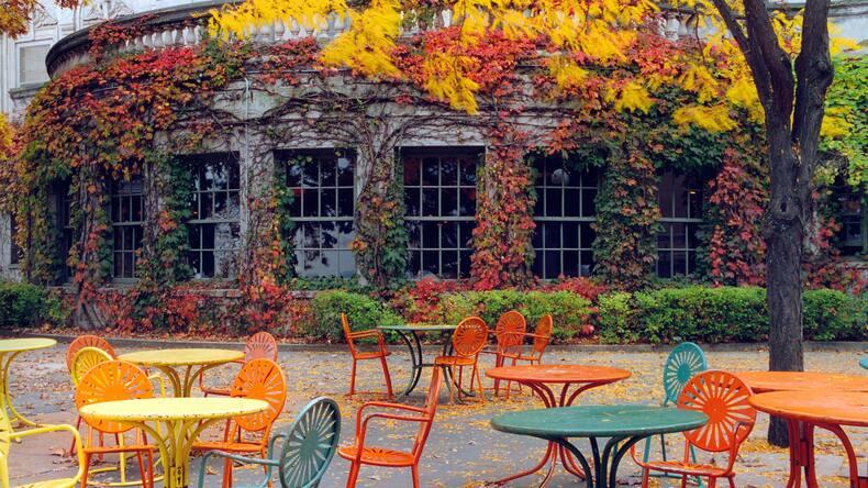 Autumn in Madison