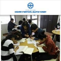Yokohama International Education Academy, 요코하마