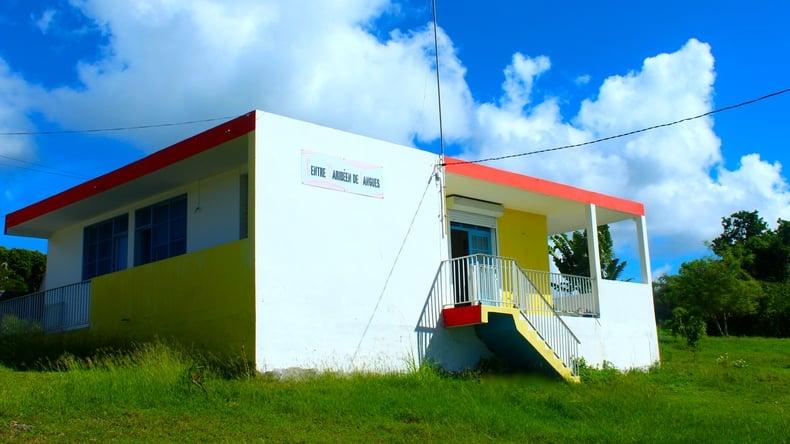 학교 빌딩