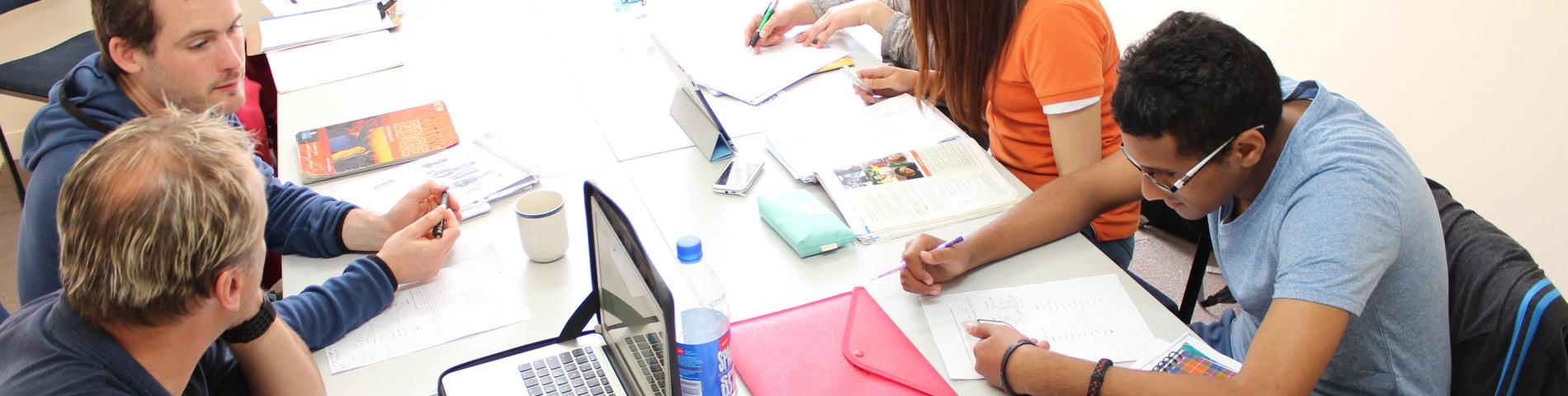 Language Schools New Zealand bilde 1