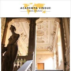 Academya Lingue, Bolonha