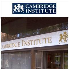 Cambridge Institute, Madrid
