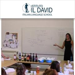 Istituto Il David, Florença