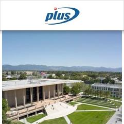 PLUS Junior Centre, Los Angeles
