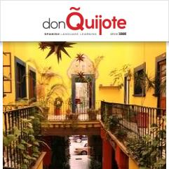 Don Quijote / Solexico Language & Cultural Centers, Гуанахуато