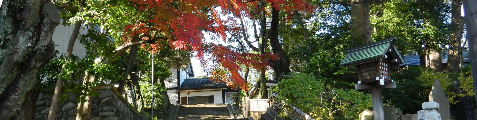 1 фотографий Yokohama International Education Academy