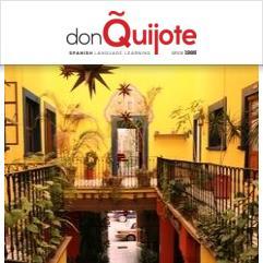 Don Quijote / Solexico Language & Cultural Centers, Guanajuato