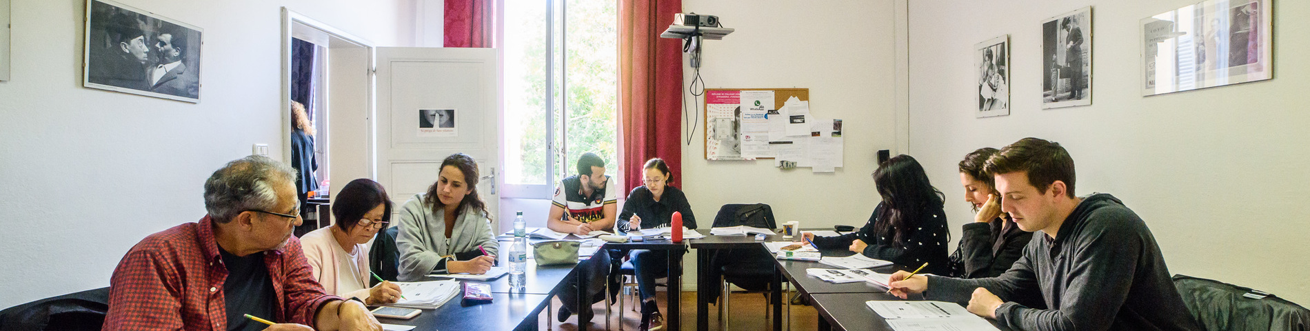 A.L.C.E. Accademia Lingue e Culture Europee bild 1
