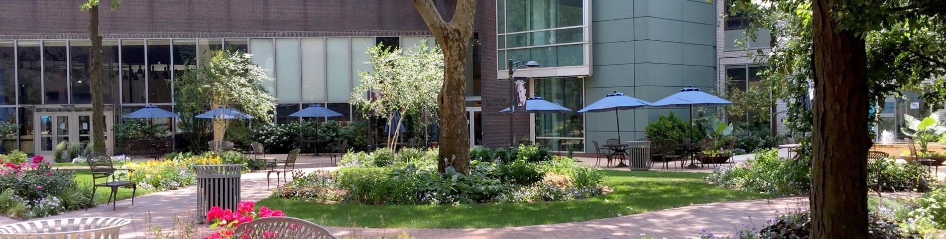 Embassy Junior Centre bild 1