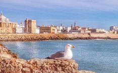 Legnépszerűbb célállomások: Cádiz (A város kicsinyített nézete)