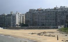 Top-Reiseziele: Montevideo (Miniaturansicht der Stadt)
