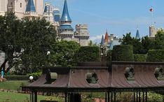 Principais destinos: Orlando (city thumbnail)