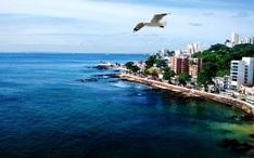 Toppdestinationer: Brasilien (Stadens miniatyrbild)