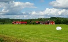 Top-Reiseziele: Finnland (Miniaturansicht der Stadt)