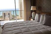 Фото готелю цієї категорії від школи Honolulu English School - 2
