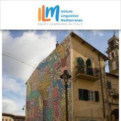 ILM - Istituto Linguistico Mediterraneo, Піза