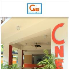 CNEI Tutorial Services, 打拉