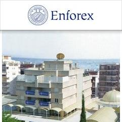 Enforex, 马贝拉