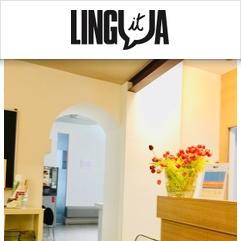 Lingua IT, 维罗纳