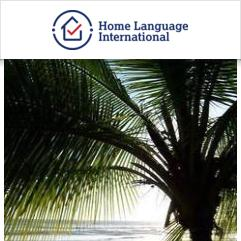Study & Live in your Teacher's Home, 圣何塞